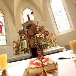 Crkva Nedelisce (11)
