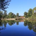 Ribnjak Gornji Hrascan (4)