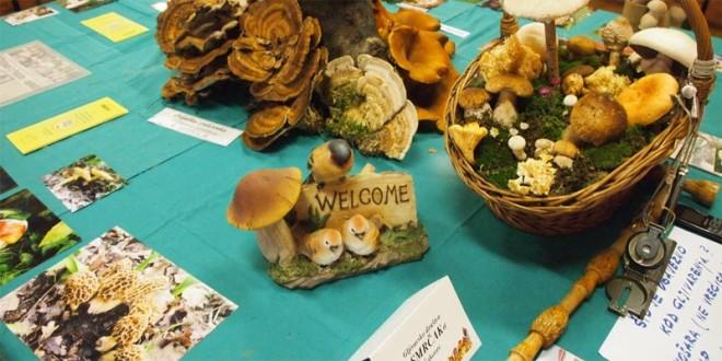 U Pušćinama održana izložba gljiva