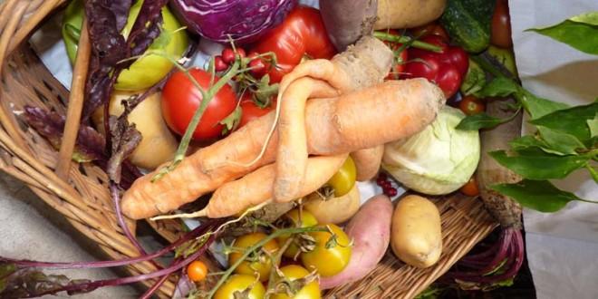 Dani zahvalnosti za plodove zemlje 2102