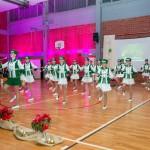 plesna-carolija-2015-1