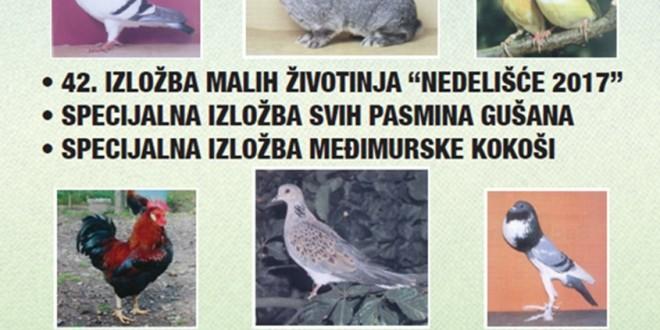 42. Međunarodna izložba malih životinja